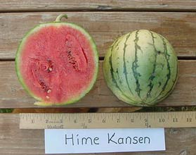 Photo of Hime Kansen watermelon