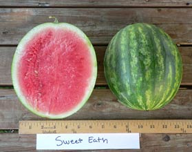 Photo of Sweet Eat'n watermelon