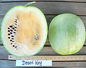 Photo of Desert King watermelon