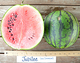 Photo ofJubilee watermelon