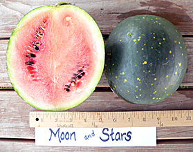 Photo of Moon & Stars watermelon
