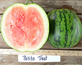 Photo of Petite Treat watermelon