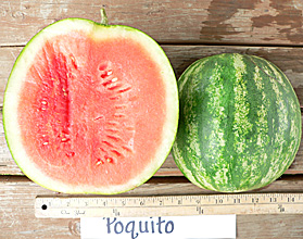 Photo of Poquito watermelon