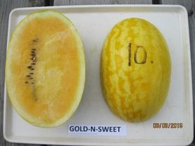 Photo of Gold-N-Sweet watermelon